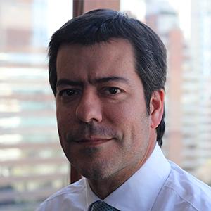 Sergio Huidobro Martínez